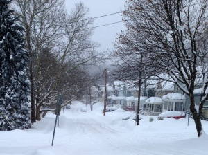 Matt took this picture looking down our street this morning.  Just another day in the %*@# tundra.
