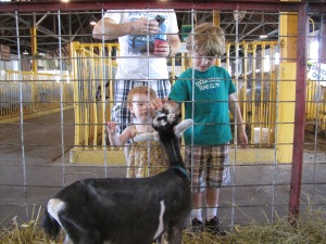 Evanny and Caleb checking out a baby goat at the State Fair in August  (child #3 was asleep at the time, strapped to the photographer, and too young for goat-investigating anyway)
