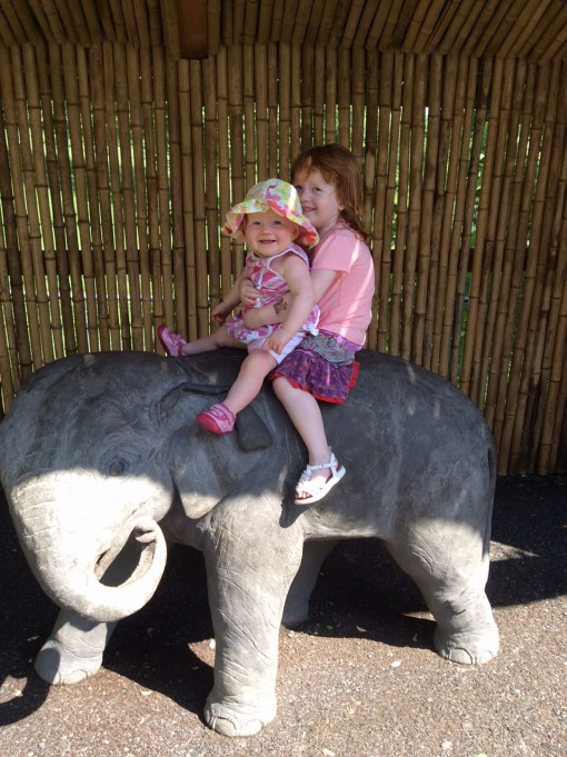 The torch has been passed: our little girl is big enough to be the one holding somebody ELSE up in zoo elephant pictures, instead of the one being held herself.  And Tabitha's delight is clear: there's no doubt on her part that she's in safe hands.